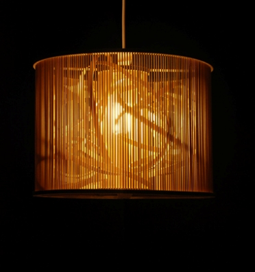 Eco1stArt.com: Cage Pendant Light :  light fixtures ecochic branches lighting